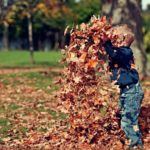 Boy Throwing Autumn Leaves Up