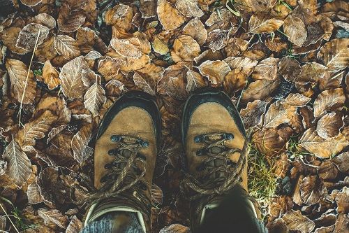 Muddy Hiking Boots in Pile of Leaves