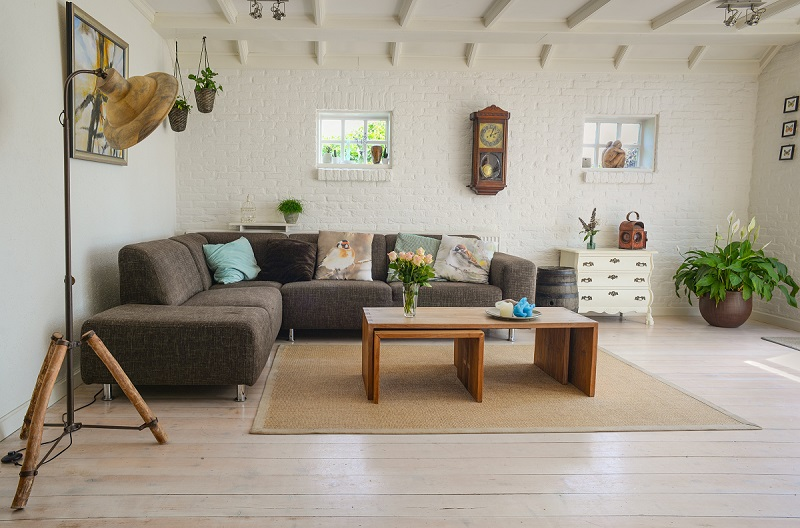 home-living-room-with-plants