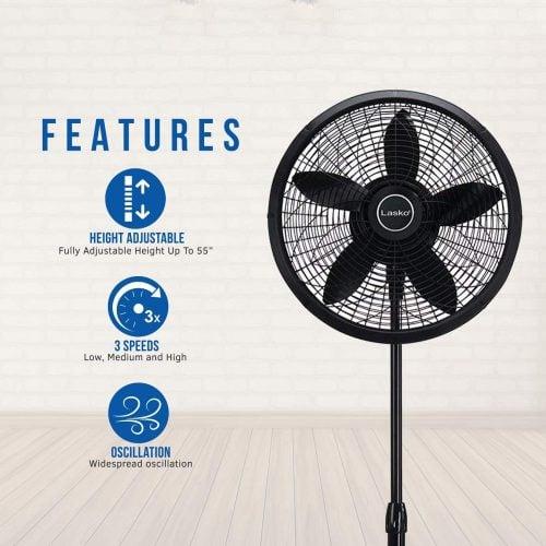 Standard features on any modern fan.