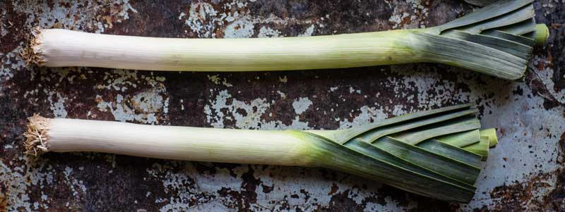 Pair of Leek Vegetables