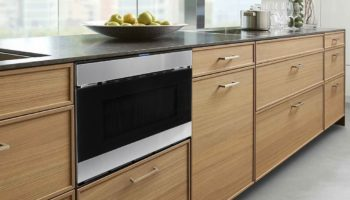 Microwave or steam oven