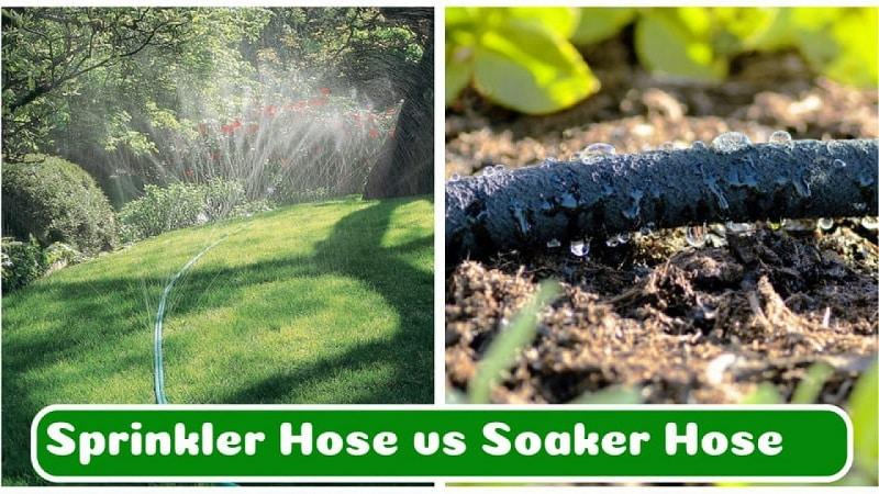 Choosing between two popular garden water systems.