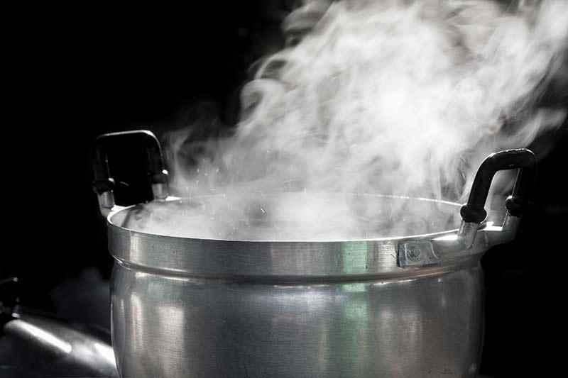Boiling bot with water vapor