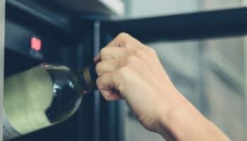 Fridge-vs-Wine-Cooler-Featured