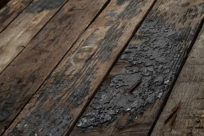rotting floor boards