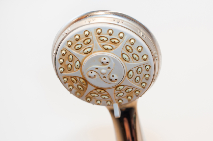 Crusty shower head