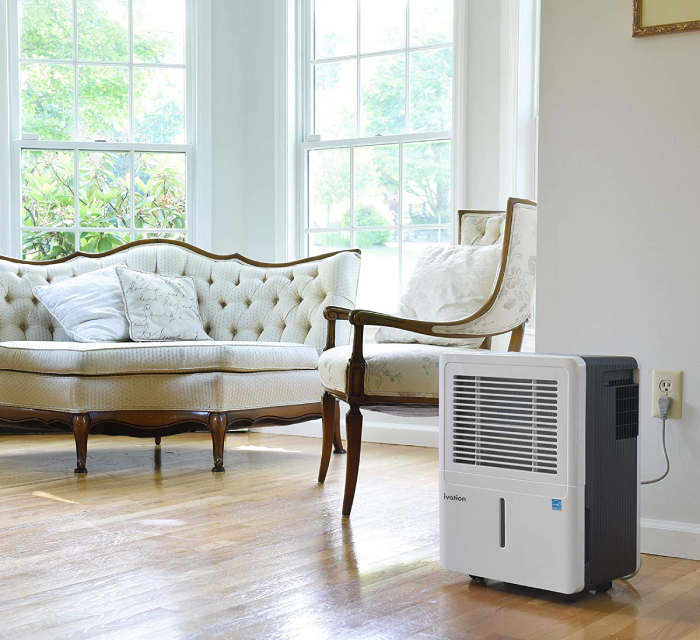 Ivation Dehumidifier at the living room
