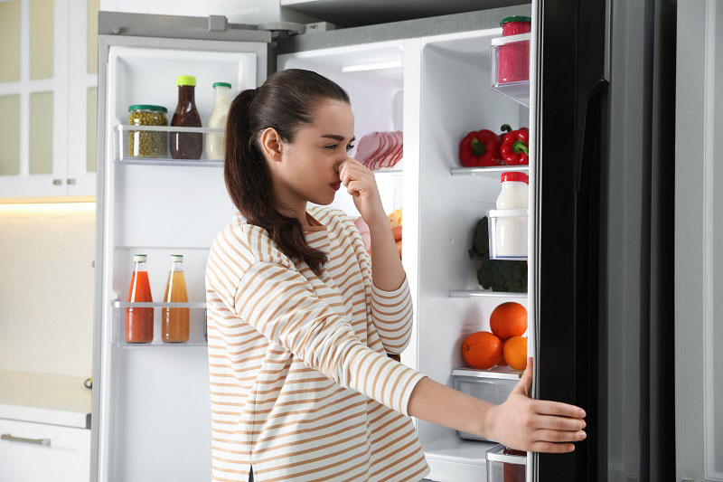 spoiled food in the freezer